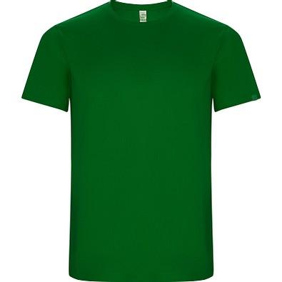 Funktions T-Shirt Imola Herren, farngrün, L
